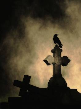 Gothicrow Images - Dark Foggy Night And Crow