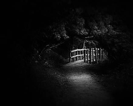 Dark Footbridge by Scott Norris
