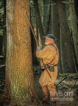 Randy Steele - Dark Forest Golden Light Cook Forest