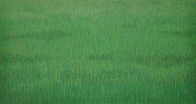 Dark Green Grassland by Kenneth Ober