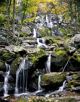 Dark Hollow Falls by John Rowe