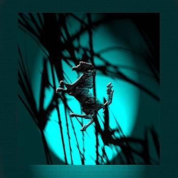 Dark Horse 7 by Debolina Moitra