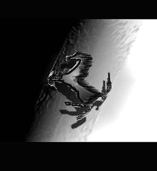 Dark Horse 8 by Debolina Moitra