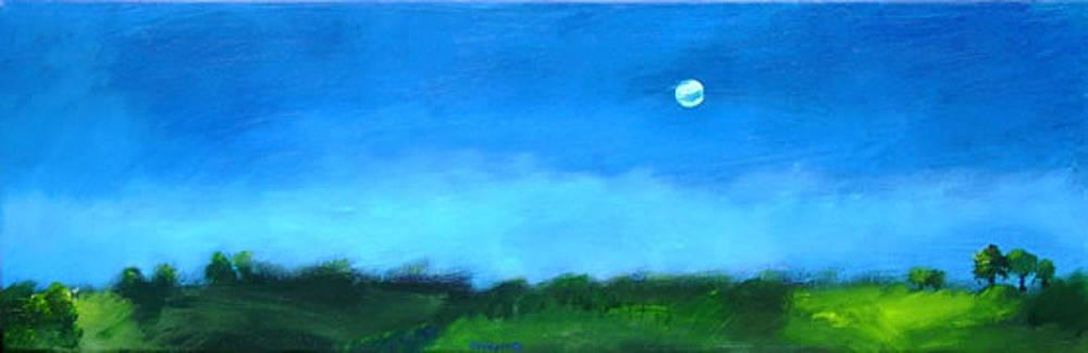 Dark Marsh by Dave Jones