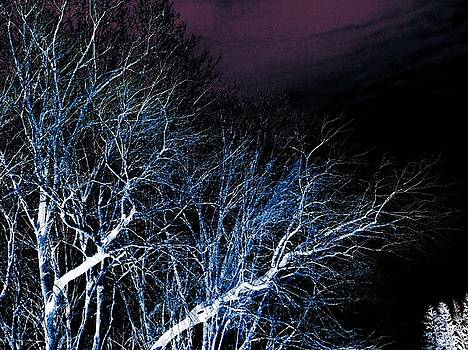 Dark Night by Grant Marchand