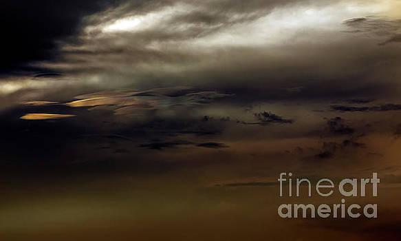 Dark Sky by Reynaldo Brigantty