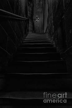 Dark stairway by Steev Stamford