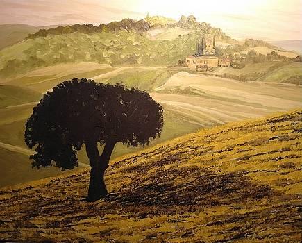 Dark tree in the vast by Ray Khalife