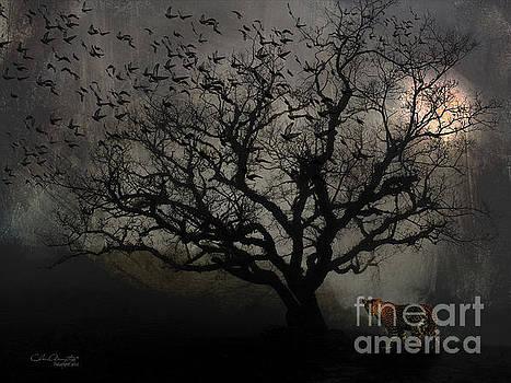 Dark Valley by Chris Armytage