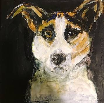 Dasher in Paint by Randi Schultz