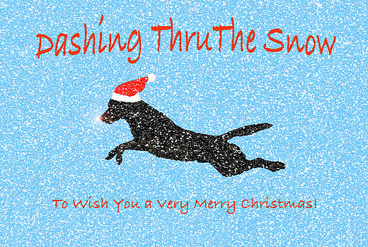Dashing Thru The Snow by Dale Hall