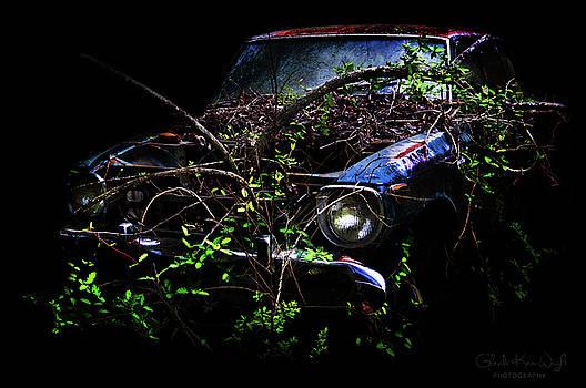 Datsun Treehouse by Glenda Wright