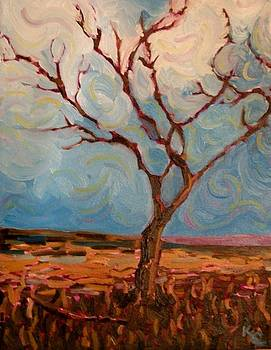 Daves Tree by KC Chapman