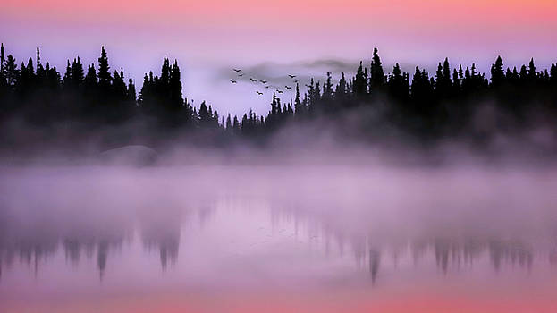 Dawn by Garett Gabriel
