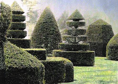 Angela Davies - Dawn In A Topiary Garden
