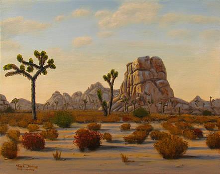 Dawn by Mark Junge