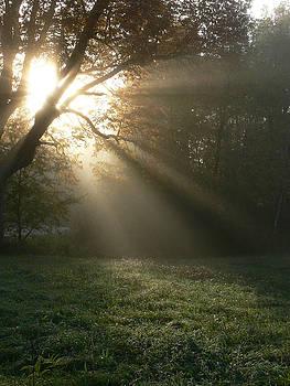 Dawn  by Natalie LaRocque