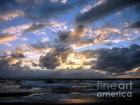 Dawn of a New Day Treasure Coast Florida Seascape Sunrise 138 by Ricardos Creations