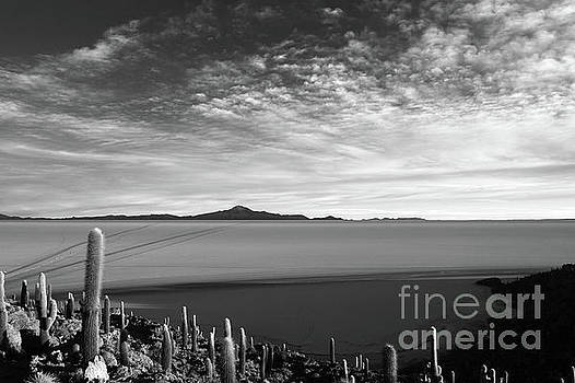 Dawn Panorama of Salar de Uyuni in Black and White Bolivia by James Brunker