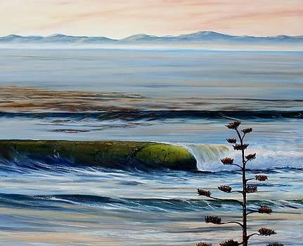 Dawn Patrol Devereux Point by Jeffrey Campbell