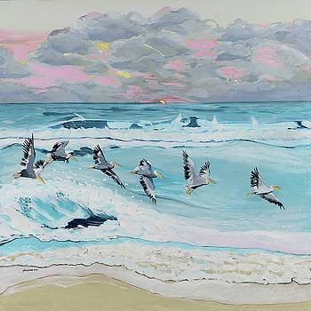 Dawn Pelicans by Pamela Trueblood