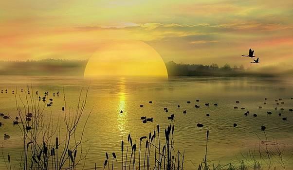 Dawn by Vera  Laake