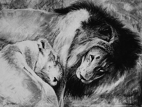Dawn's A Coming Open Your Eyes - Lions by Susie Gordon
