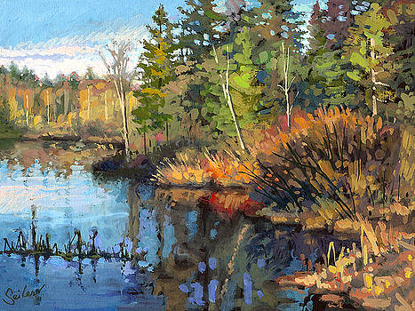 Dawson Lake- Shoreline by Larry Seiler