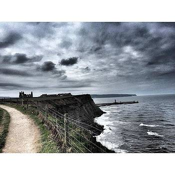 North Yorkshire coast along the Cleveland Way. View of Whitby Abbey in the background. by Rebecca Bromwich