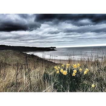 North Yorkshire coast - walking along the Cleveland Way  by Rebecca Bromwich