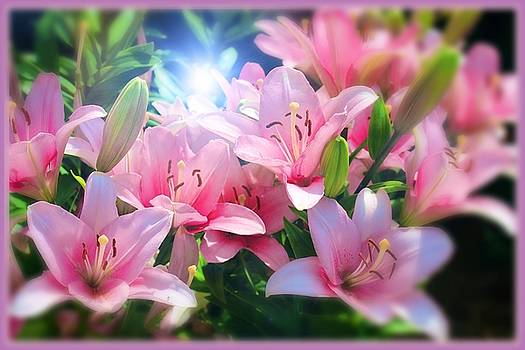 Day Light Lilies by Mindy Newman