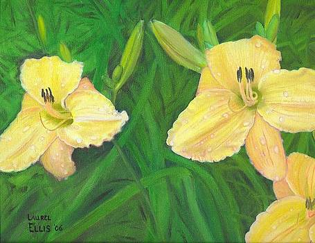 Day lilies by Laurel Ellis