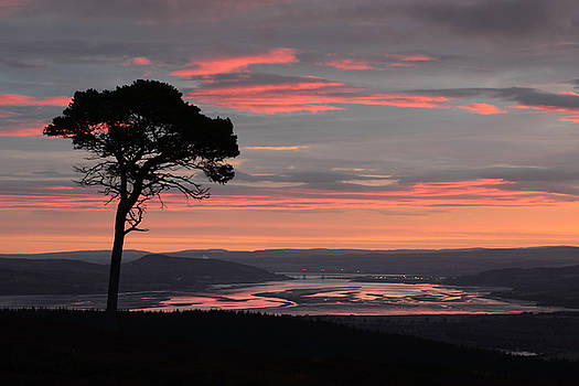 Daybreak Above the Beauly Firth and Inverness by Gavin MacRae