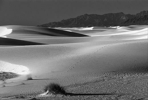 Sandra Bronstein - Daybreak at White Sands