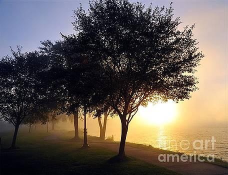 Terri Gostola - Daybreak