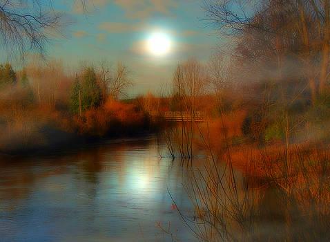 Daydreams by Birgit Presser