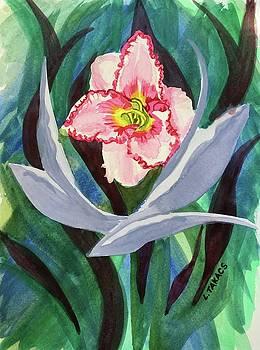 Daylily by Lynn Takacs