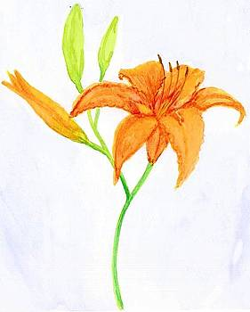 Daylily by Melanie Rochat
