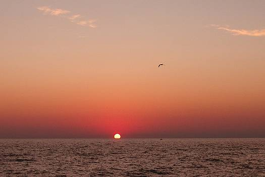 Day's End Lake Michigan by Ted Lepczynski