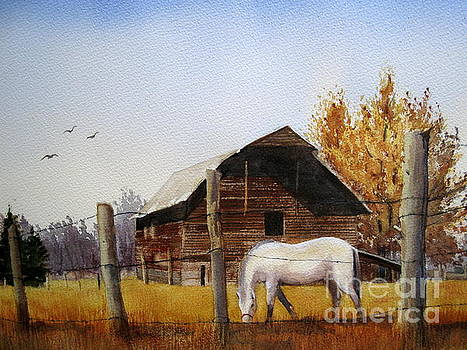 Days Gone By by Shirley Braithwaite Hunt