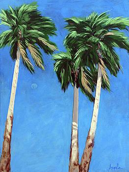 Daytime Moon in Palm Springs by Linda Apple
