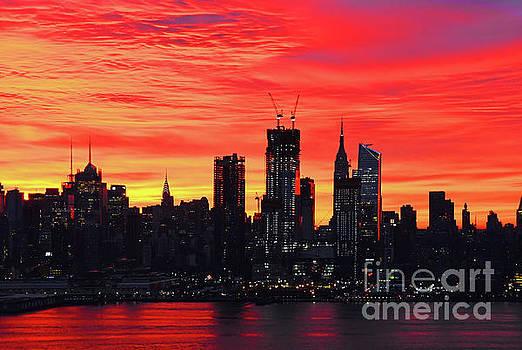 Regina Geoghan - Dazzling New York Dawn
