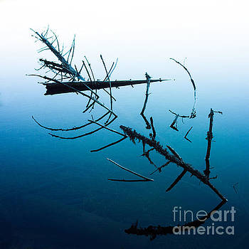 BERNARD JAUBERT - Dead branches into a lake