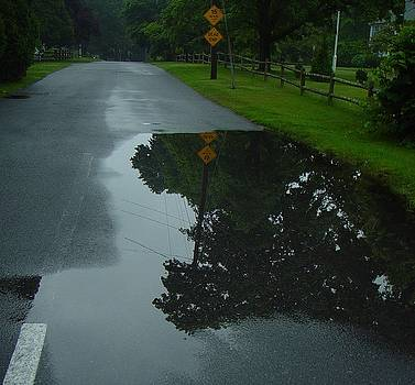 Dead end puddle by Ron Sylvia