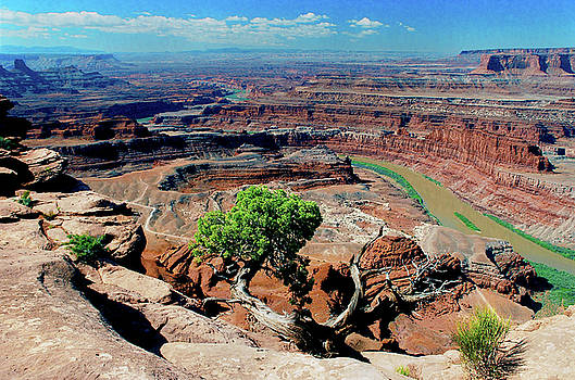 Dead Horse Point #2 by Frank Houck