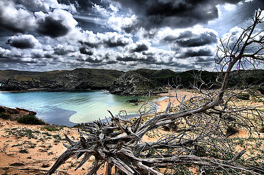 Pedro Cardona Llambias - dead nature under stormy light in mediterranean beach