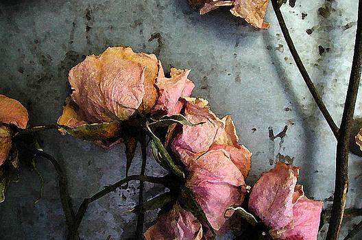 Kathi Shotwell - Dead Roses 3