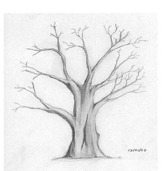 Dead Tree by Subramaniyam Sasikaran