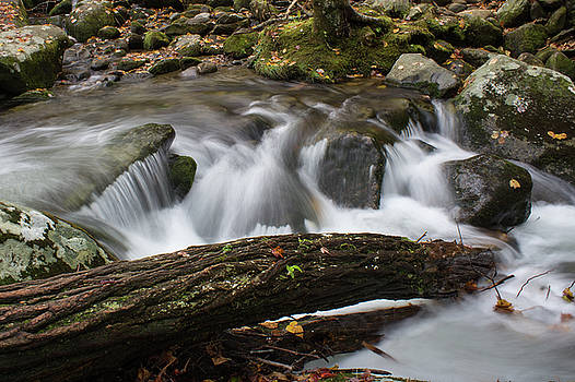 Deadfall log across a portion of a creek in the Great Smoky Mountains in fall by Natalie Schorr