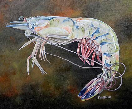 Dean's Shrimp by Phyllis Beiser